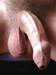 Hairy Gay Cock Pics